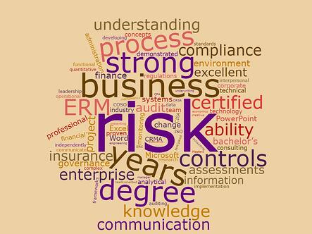 Enterprise Risk Manager Qualifications Word Cloud from LinkedIn Job Posts.jpg