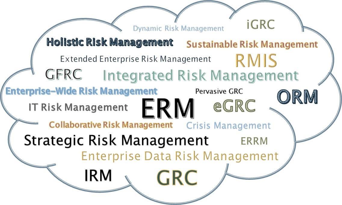 Fog of Risk Terms.jpg